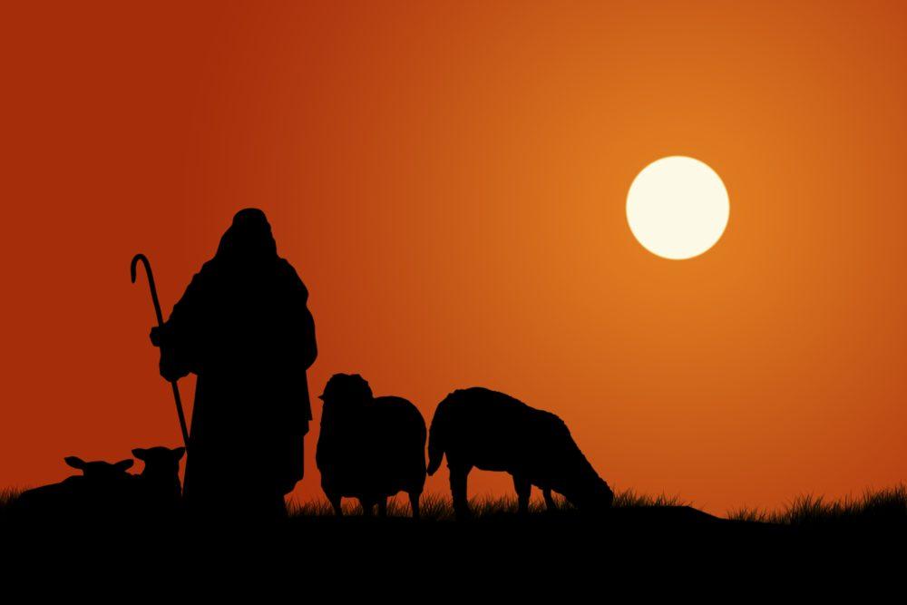 Shepherding in a Shutdown Image