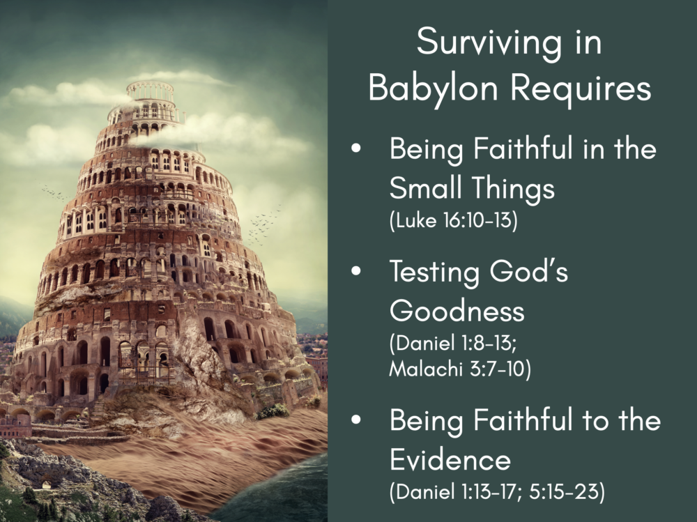 Surviving in Babylon Image