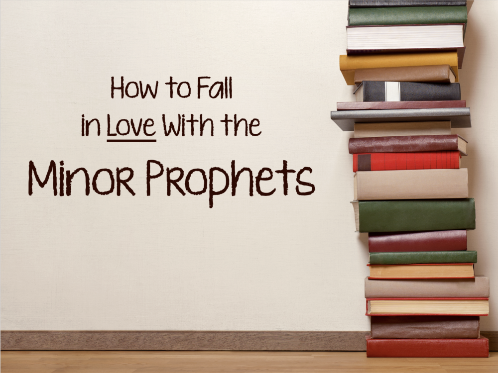 How to Fall in Love With the Minor Prophets Image